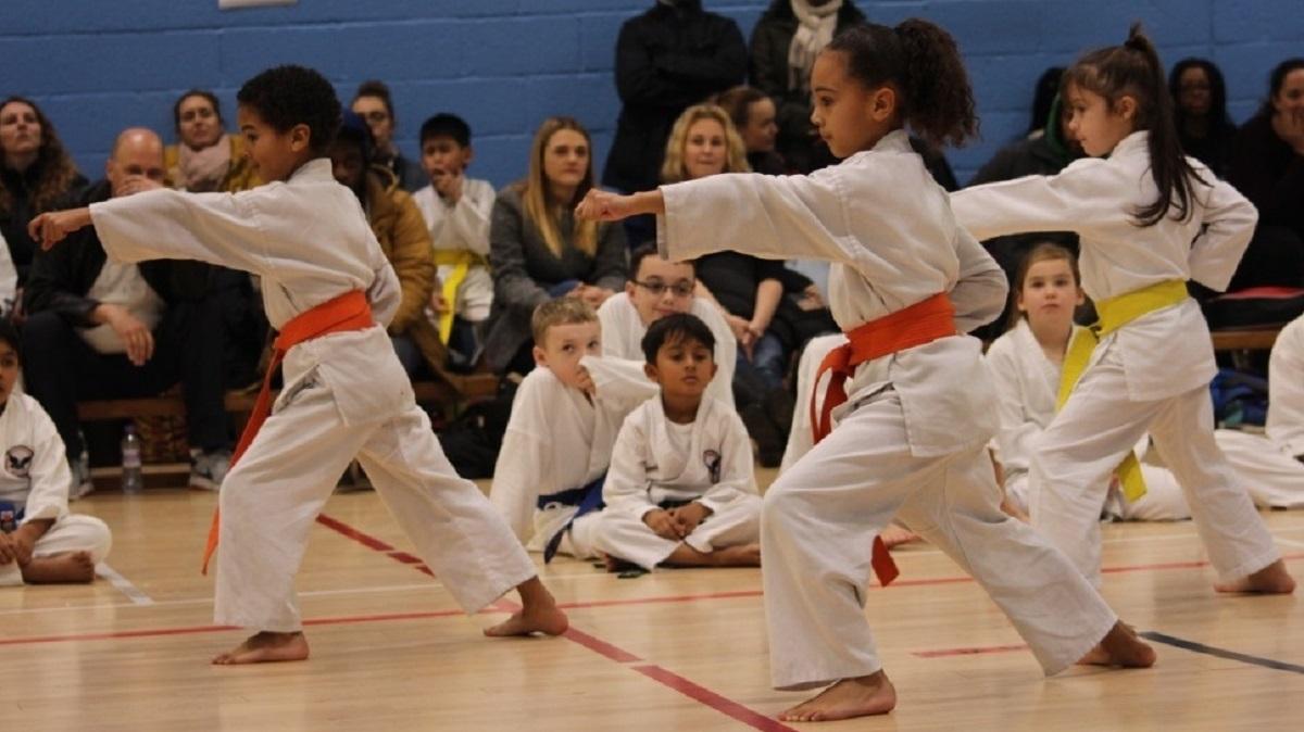 Kenshukai Karate - Homerton- Kids - Chats Palace